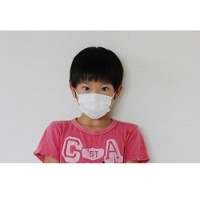 PM2.5 アレルギーっ子 影響